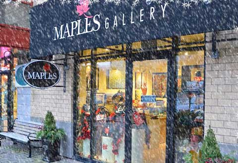 Maples Gallery