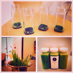 Juice Press Wheatgrass