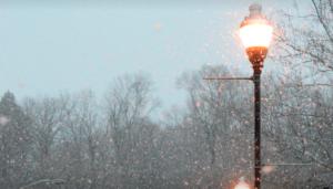 Halifax Snow Day